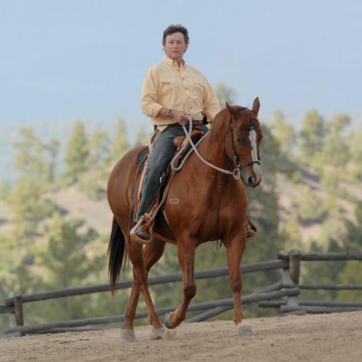 Trusting Horses